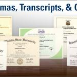 Original Fake Diplomas, Passports