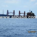 Self Trimming Bulk Carrier-1