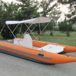 catamaran(racing cat)-BS550