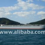 6500DWT BOTH HOPPER AND HOLD BARGE-