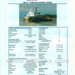 Multipurpose Support Ships-
