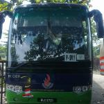 Bus windscreen-