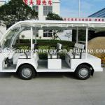 electric sightseeing bus 8 seats WJ08-WJ08