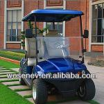 Luxury 2 seater electric club car with good quality-WS-GLR2