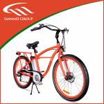 Beach Electric bike CE certification LMTDF-07L-LMTDF-07L