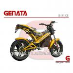 EEC Folding Electric Bicycle-GM890E