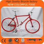 New Colorful fixie bike road bicycle fixie with EN14764 certification